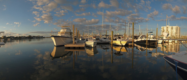 Marina Morning